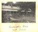Photo: Lucy Daw Autograph Album photographic collection. Adelaide Hosptial ; 1906-1907; AR#629.5 to AR#629.8