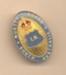 Badge: Nurses Board SA, E.N. (Enrolled Nurse); Ca 2000; AR#997