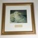 Artwork: Framed Print of Florence Nightingale; AR#10611