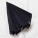 Equipment: small reflector umbrella; Ca 2000; AR#9676