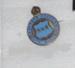 Badge: Registered Mental Nurse; 1920; AR#115