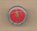 Badge: Critical Care Course Royal Adelaide Hospital; Ca 2000; AR#5387