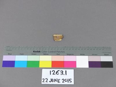 Bone tab; Unknown; 1263.1