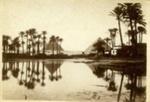 Postcard, Egypt; c. 1916