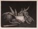 Artichokes; Lionel LINDSAY, 1874-1961; 1936; 1938_94