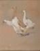 Geese; R.W. STURGESS, 1890-1932; n.d.; 1944_30
