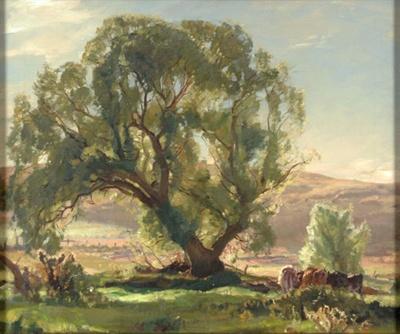 The Willow; Hans HEYSEN, 1877-1968; 1925; 1932_6