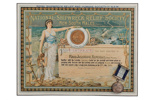 Royal Shipwreck Relief & Humane Society Certificate and Medal; 1906; 03301-1