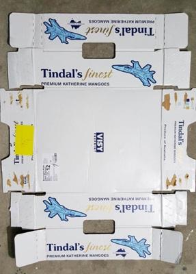 Tindall Mangoes; Visy; 14.54464