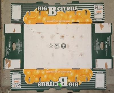 Big B Citrus ; OJI; 34.50137