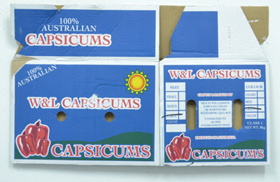W & L Capsicums; Maker unknown;  24.825636