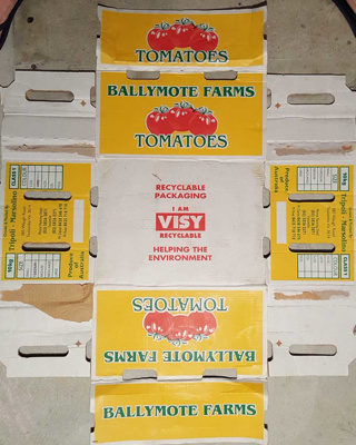 Ballymote Tomatoes; Visy; 36.45797