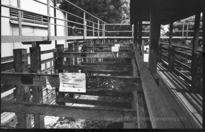 Stock Holding Pens.; Unknown; 1998; CCPDM94