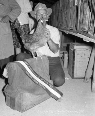 Dandenong Show; Graham Southam; 1968; 10.467.08