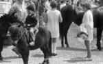 Dandenong Show; Graham Southam; 1968; 10.467.13