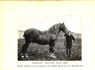 Photograph - Bawdsey Harvest King 3879; 1914; SpHS-2-2-19-2