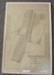 Survey Plan  - Fruit tree plantings Ripponvale 1915; G.W. Wilson, DELT; 1915; CR1985.014