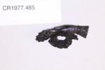 Brooch; Unknown maker; Unknown; CR1977.485