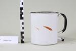 Enema bucket; Unknown maker; Unknown; CR2007.021