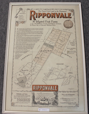 Sales publicity poster - Ripponvale, 30 Irrigated Fruit Farms for Private Sale  ; F.J. Williams M Inst. N.I.S.; 1915?; CR1985.015