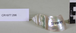 Serviette ring; Unknown maker; Unknown; CR1977.296