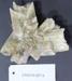 Selenite specimens (3); CR2016.027