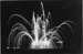 Photograph of Coronation Firework Display 1953; photographer : unknown; SHHMG:A515