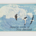 Aquatic Birds of New Zealand' collector's album; W. Gregg & Co. Ltd; Michael Coombe; 01786