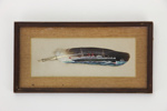 Union Steamship Company 'Maori' painted feather; Frank Barnes; 01693.1-.2