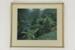 New Zealand bush photographic print; Whites Aviation Ltd; 05077