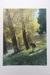 New Zealand Autumn photographic print; Whites Aviation Ltd; 05026