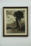 """""""Where once a Forest stood"""" photographic print; George Chance; 1932; 05124"""