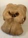 Elephant skull; SLNM.1993.01.02