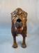 Lion; SLNM.1963.69.02