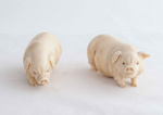 Two Japanese Ivory Pigs; Unknown; JR00151