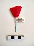 Badge, Poppy; RA2018.108