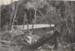 Kendall bridge, Ahititi; RAP2020.0174