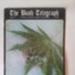 Bush Telegraph Magazine Volume 1 Issue 3 ; 1995; ISSN 1357-969X
