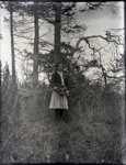 Young Aunt Nellie or Ellen posed with flowers in the woods; Aitken, John; 2017.1.024