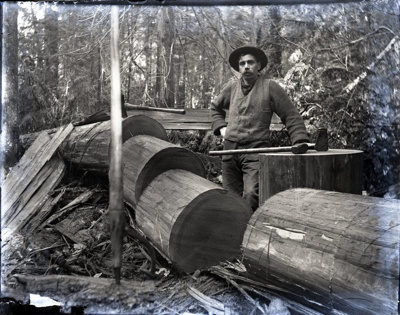 Photograph - John Aitken log rounds. ; Aitken, John; 2017.1.322