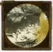 Raeburn Family Picnics and Holidays (slide 11/55); c.1889; HL.MJ.00120