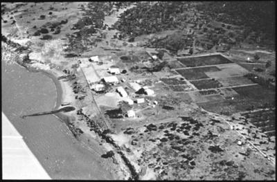 Aerial view of unidentified agricultural plots 1 : general Australian Inland Mission scenes / [John Flynn?]; Harringtons Ltd; Flynn, John, 1880-1951; 1929; HL.NL.23916431