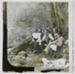 Raeburn Family Picnics and Holidays (slide 43/55); c.1889; HL.MJ.00147
