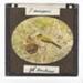 Lantern Slide - Bird & Nest, 1920-1940; J R. Kinghorn; 1920-1940; MV.MM.35337