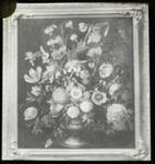 Lantern Slide - 'Flower Study', 1909-1930; 1909-1930; MV.MM.111696
