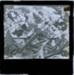 Raeburn Family Picnics and Holidays (slide 27/55); c.1889; HL.MJ.000132a