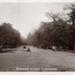 "Postcard: ""Bushwood Avenue, Leytonstone""; ARN0019"