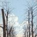 "Postcard: ""Bushwood Avenue Leytonstone""; ARN0015"