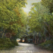 "Postcard: ""Wanstead Park""; ARN0218"