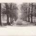 "Postcard: ""Avenue, Bushwood"".; ARN0013"